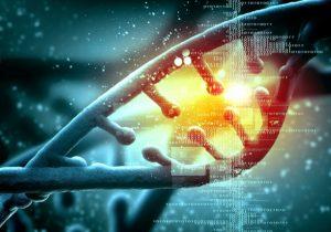 MTHFR gene testing